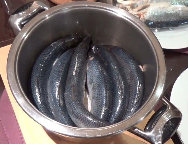 Соление селедки в домашних условиях - простой и вкусный рецепт