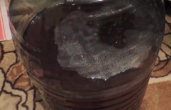 домашнее виноградное вино рецепт приготовления пропорции фото