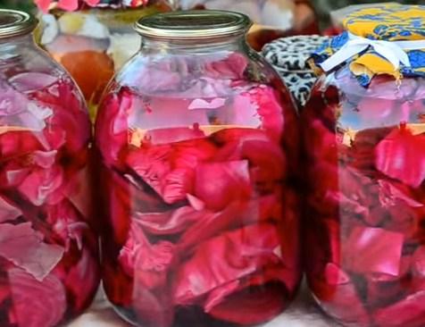 Вкусный рецепт салата из капусты быстрого приготовления
