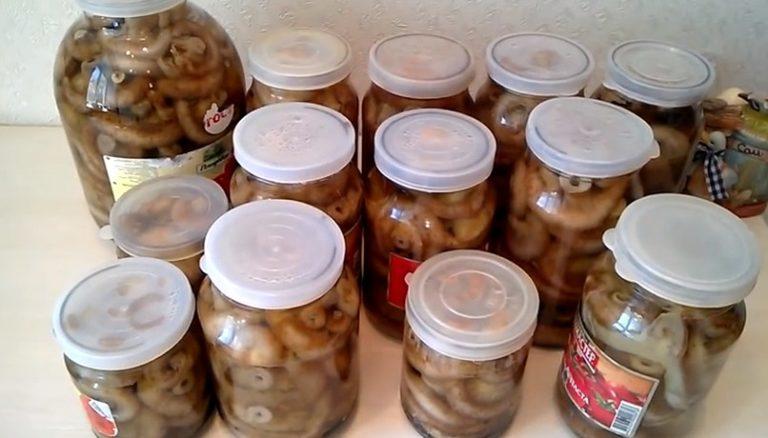 Засолка груздей в домашних условиях - рецепт с фото