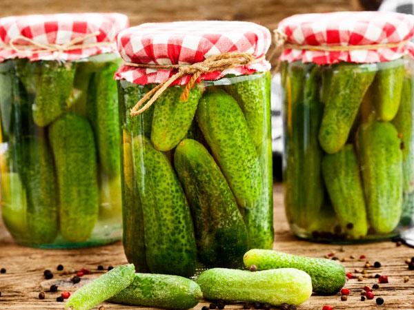 Хрустящие и нежные малосольные огурцы: холодный и горячий рецепты с фото
