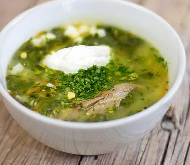 Легко усваиваемое витаминное блюдо – зеленый борщ: рецепт и фото